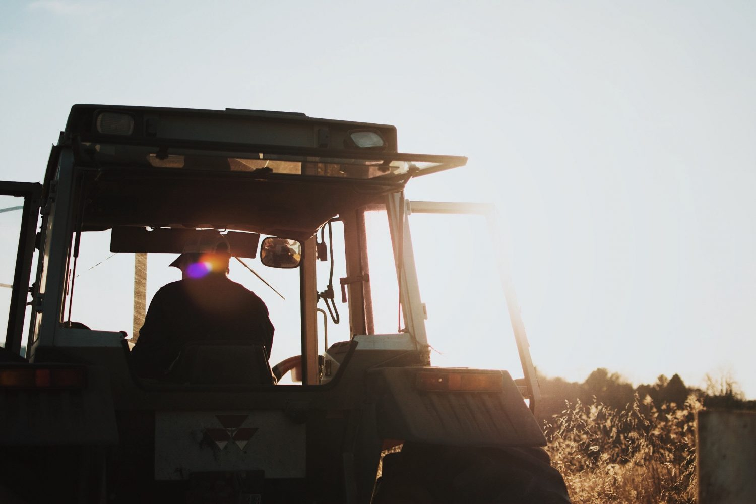 Innovation in agriculture: a multidisciplinary endeavour - Knowledge Factory