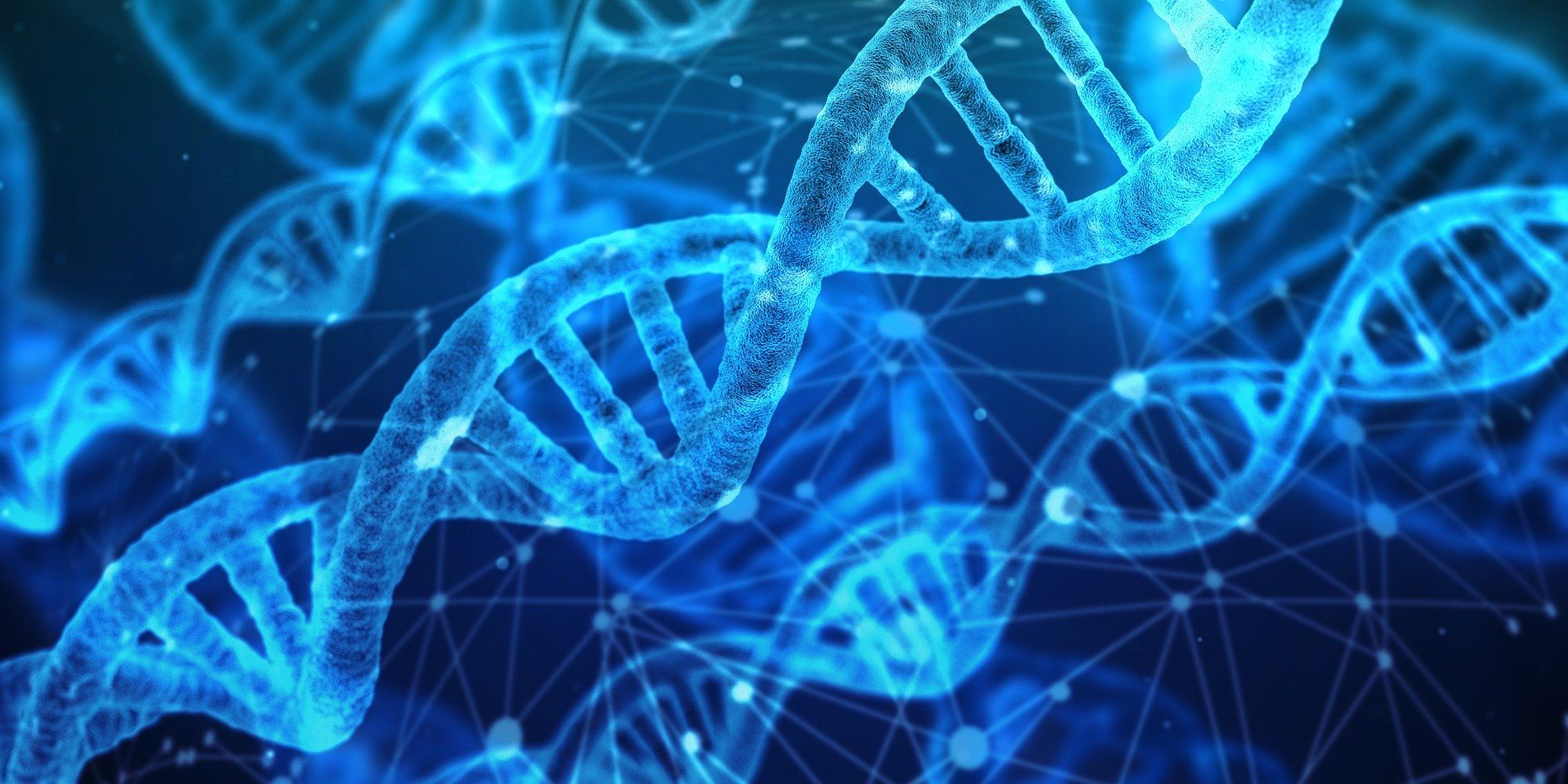 What is CRISPR and what does it mean for science? - Knowledge Factory